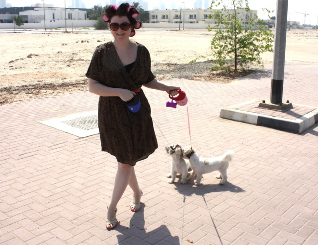 baby sitters for your pet abu dhabi confidential