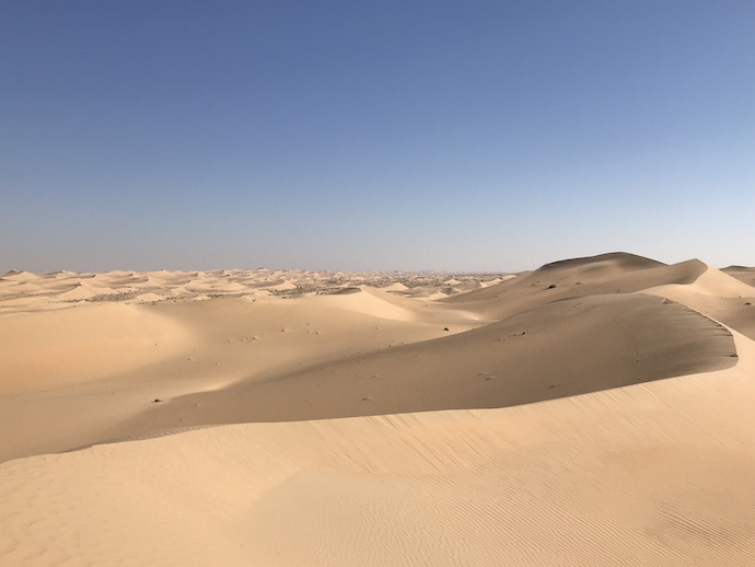 Morning walk in the Abu Dhabi desert