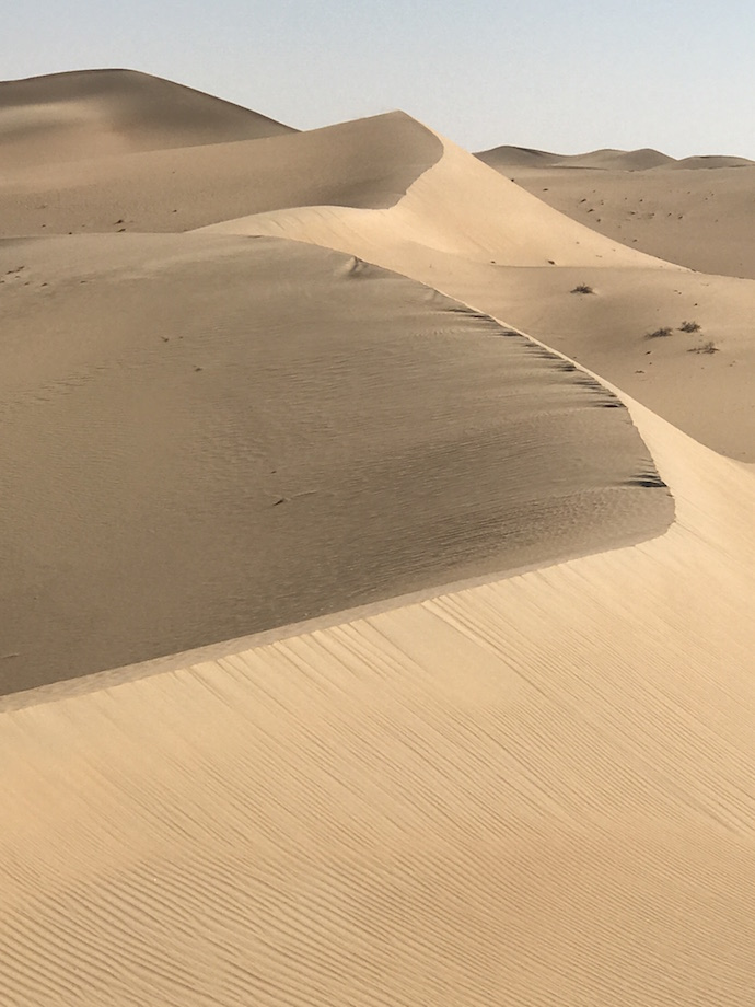 High dunes of Abu Dhabi