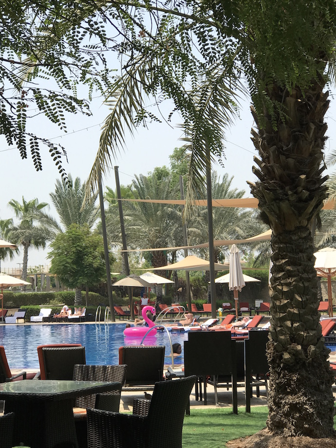 Brunch and pool offer at the westin AUH